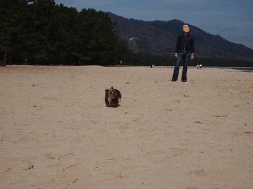 天橋立2011 041.JPG